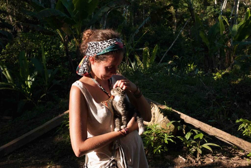 Les Chats en voyage : en plein coeur de la forêt amazonienne