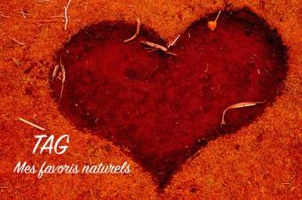 TAG : Mes Favoris 100% naturels 2015